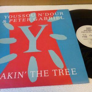 YOUSSOU N'DOUR & PETER GABRIEL - SHAKIN THE TREE